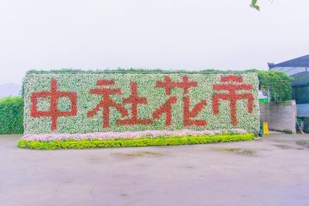 Taiwan-71